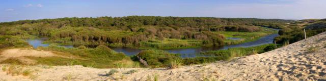 Le Courant d'Huchet | Côte Landes Nature Tourisme
