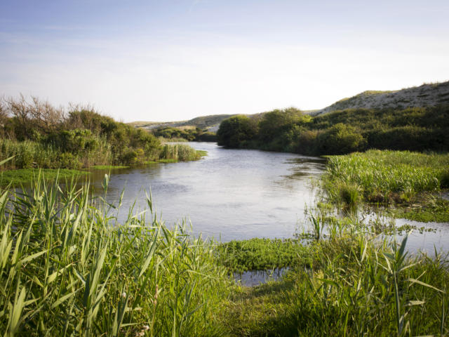 Courant d'Huchet au départ du Lac de Léon | Côte Landes Nature