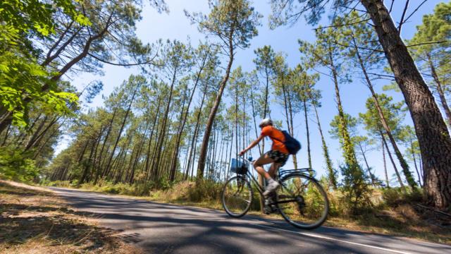 Piste cyclable à Léon   Côte Landes Nature