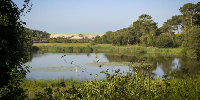 Marais de la Pipe