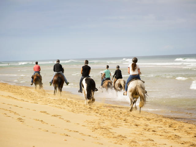 Randonnée à cheval | Côte Landes Nature