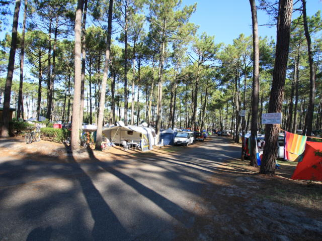 Faire du Camping à Lit et Mixe | Côte Landes Nature