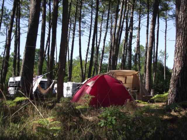 Camping à Saint Julien en Born   Côte Landes Nature