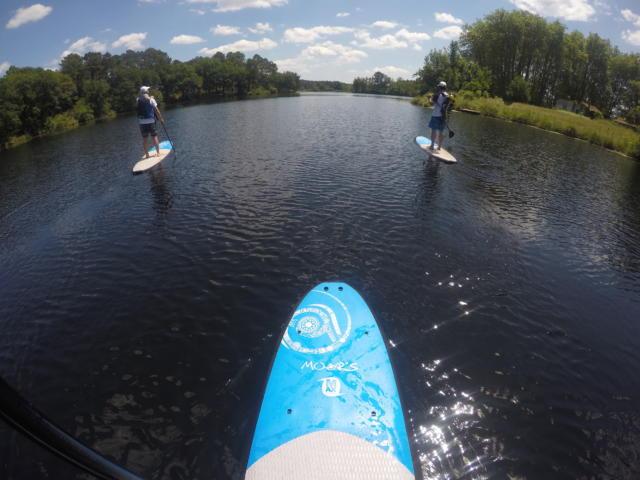 Balade en Paddle sur le lac d'Uza | Côte Landes Nature