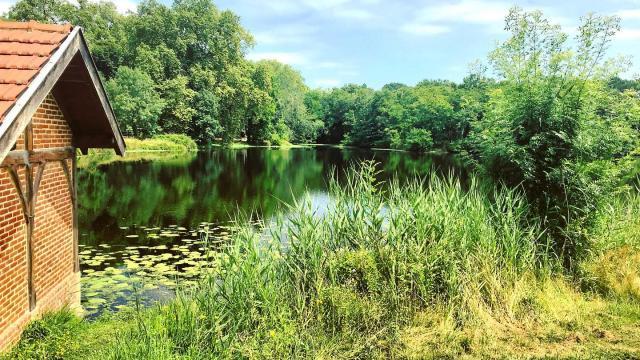 Lac d'Uune perle de la nature dans un village hors du temps à mi-chemin entre Lévignacq et Lit et Mixe ou Saint-Jza